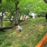 5月カタリナピッコロ(園庭開放・自由遊び)